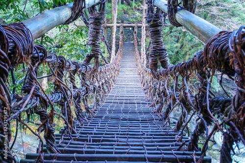 Valokuva  かずら橋