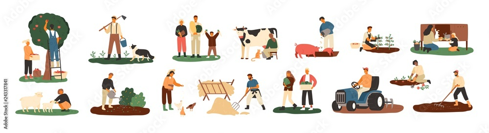 Fototapeta Set of farmers or agricultural workers planting crops, gathering harvest, collecting apples, feeding farm animals, carrying fruits, milking cow, working on tractor. Flat cartoon vector illustration.