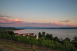 Wine growing area of the famous german Bodensee lake