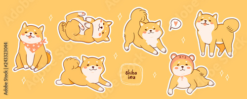 Kawaii Shiba Inu dogs in various poses. Hand drawn sticker vector set. All elements are isolated - 243323044