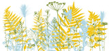 Background with drawing herbs and flowers - 243339403