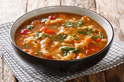 Polish national stew dish flaczki with vegetables in tomato sauce close-up in a bowl. Horizontal