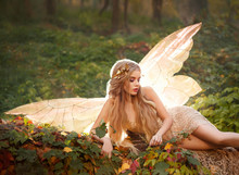 A Slender Dryad, A Nymph With Blond Long Hair And A Golden Wreath Lies On The Leaves In The Forest In A Beige Long Dress With Bare Legs, Has Glowing Wings Behind Her Back, Great Summer Photo