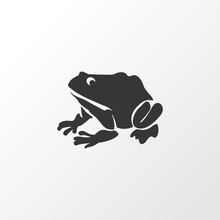 Frog Icon Symbol. Premium Quality Isolated Amphibian Element In Trendy Style.