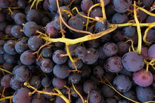 High Angle View Of Fresh Grapes For Sale At Market