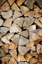 Close-up Of Woodpile In Forest