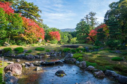 Plakat Jesienne liście Kioto