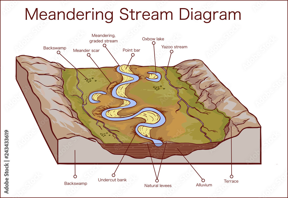 Fototapety, obrazy: Vector illustration of a Meandering Stream