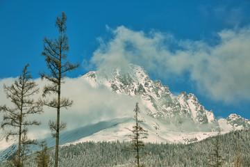 Obraz na Szkle Góry Mountains in snow covered with larch trees in Tatranska Lomnica, popular travel destination and ski resort in Slovakia