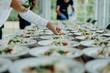 canvas print picture - Preparing the wedding reception