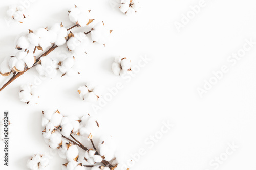 Flowers composition. Cotton flowers on white background. Flat lay, top view, copy space © Flaffy