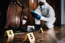 Crime Scene Detective Examinin...