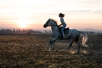 Silhouette of a girl and a horse at sunset, rushing over the field
