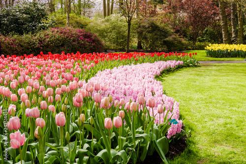 Plakat Kolorowy ogród formalny wiosna