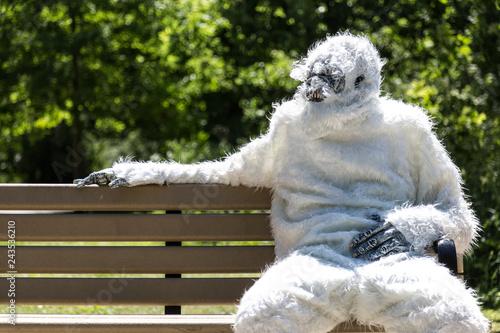 Obraz Yeti On Bench - fototapety do salonu