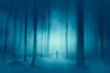 Man Walking On Magical Winter ...