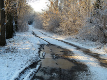 Muddy Road, Snow Covered Street In The Countryside After Snowfall. Winter Landscape With Rural Off-road, Frozen Puddles In The Forest