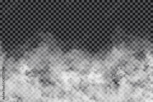 Poster de jardin Fumee Smoke clouds on transparent background. Realistic fog or mist texture isolated on background. Transparent smoke effect