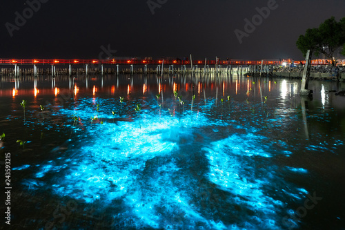 Photo Bioluminescent Plankton Light Up the Sea, The Mesmerising Phenomenon making the Sea Glows Bright Blue at Sapan Daeng (Red Bridge) at Mutchanu Shrine, Samut Sakhon Province, Thailand