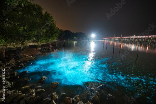 Bioluminescent Plankton Light Up the Sea, The Mesmerising Phenomenon making the Sea Glows Bright Blue at Sapan Daeng (Red Bridge) at Mutchanu Shrine, Samut Sakhon Province, Thailand Wallpaper Mural