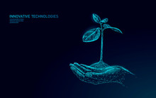 Hands Holding Plant Sprout Eco...