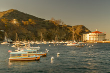 Catalina Sunset - Late Afterno...