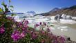 Llewellyn Gletscher in Atlin Kanada