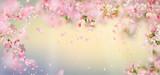 Spring Blossom Background