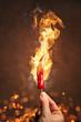 Scharfe Chili umgeben von Feuer und Flammen