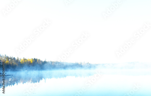 Poster Rivière de la forêt Foggy cold morning by the lake in Sweden