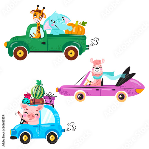 Aluminium Prints Creatures Set of kids transport with llama, giraffe, elephant, pig and pumpkin. Cute animals ride on the car. Vector illustration isolated on white background