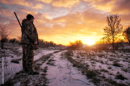 Winter hunting for hares at sunrise. Hunter moving With Shotgun and Looking For Prey.