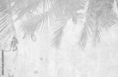 beautiful-palm-leaf-shadow-on-grunge-cement-wall-monochrome