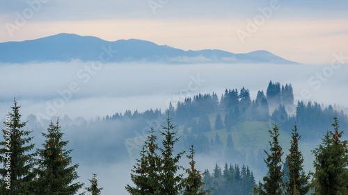 Poster Morning with fog Beautiful sunrise at the foggy mountain range