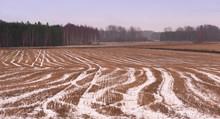 Field In Winter, åkerlandskap...