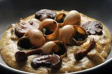 Polenta Con Funghi E Chiocciole Ft7109_8210