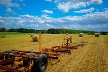 A Trailer Awaits To Be Loaded With Hay Bales From A Freshly Cut Winter Wheat Field. Raleigh, North Carolina.