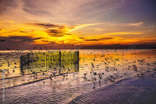 Twilight sunset with sea an...