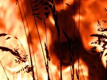 Texturas De Fuego