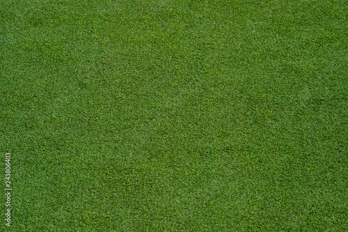 green grass turf floor texture background Wallpaper Mural