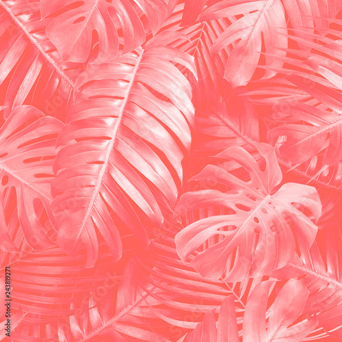 tropical-leaves-background-with