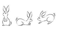 Rabbit Line Pose