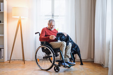 A Disabled Senior Man In Wheel...