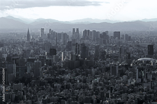 Fotografie, Obraz  Gray monochrome city Tokyo