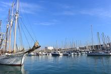 Der Yachthafen Von Port Vell -...
