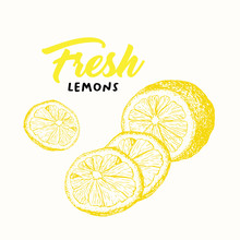 Fresh Lemon Vector Illustration. Sketch Fruit Clipart. Handwritten Lettering, Calligraphy. Isolated Yellow Citrus Color Design Element. Sliced Lemon Engraving Style Drawing. Shop Sign, Logo