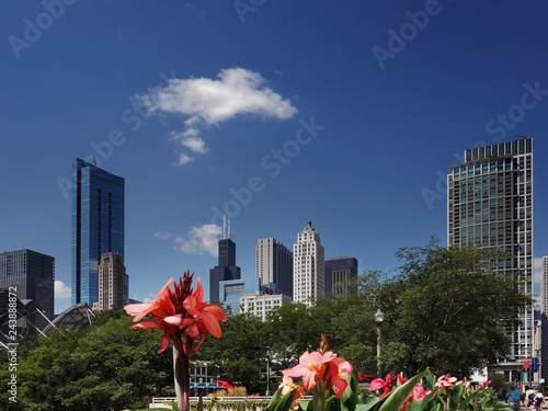 Deurstickers Amerikaanse Plekken Chicago skyline view