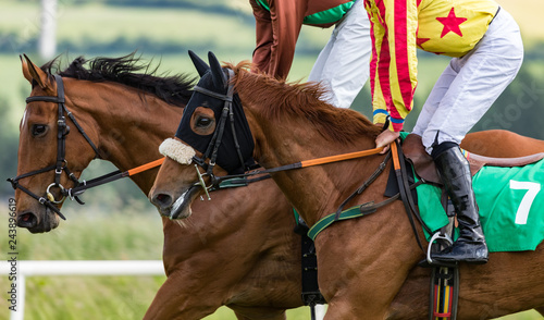 Close up on two Race horses galloping on the race track