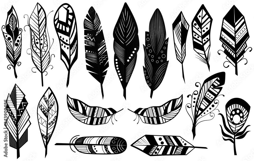 Fototapeta Peerless tribal design of decorative black feathers silhouette set vector illustration.