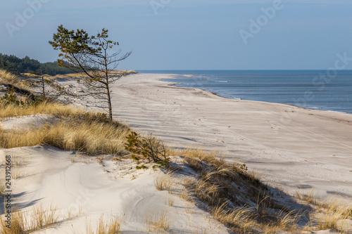 Fototapeta Plaża w Słowińskim Parku Narodowym.  obraz